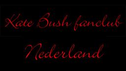die niederlaendische seite